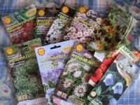 Любительские пакетики семян многолетних растений
