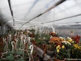 Ранние морозы и наличие многих растюх заставляют рано натянуть внутреннюю пленку в теплице